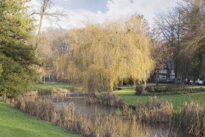Wilhelminapark_1_Apeldoorn_45