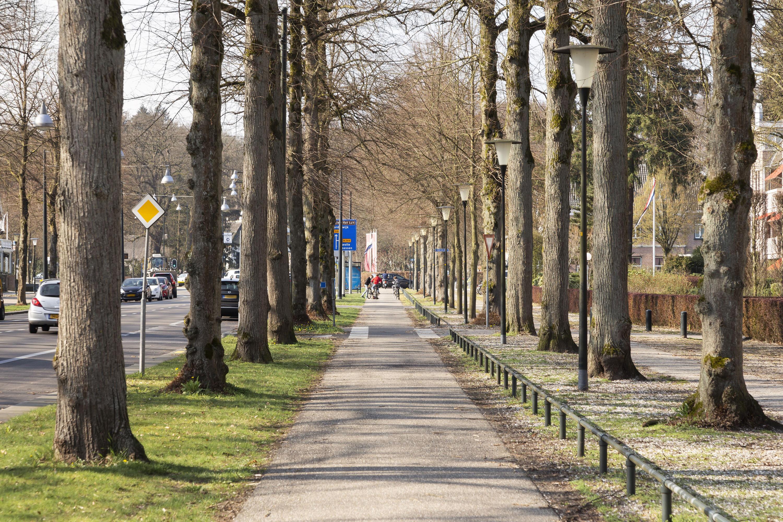 Loolaan_368_Apeldoorn_30