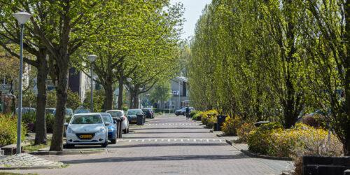 De Boomgaard 63 Zutphen Landheeren
