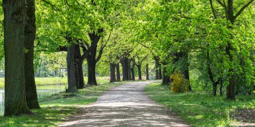 Zwaansprengweg 7b Apeldoorn